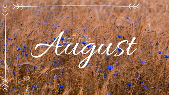 Mein Fazit für August